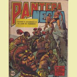 PANTERA NEGRA REVISTA Nº 10