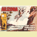 ARIZONA Nº17