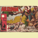 ARIZONA Nº34