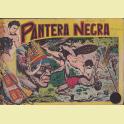 COLECCION COMPLETA PANTERA NEGRA
